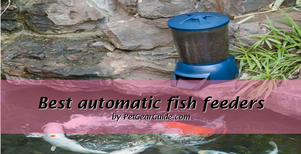 lb with ponds capacity fish for pond adjustable feeder corn lake hunter feed legs texas feeders products