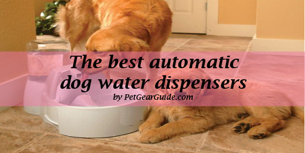 best automatic dog water dispensers