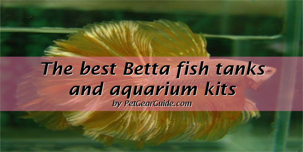 best betta fish tanks