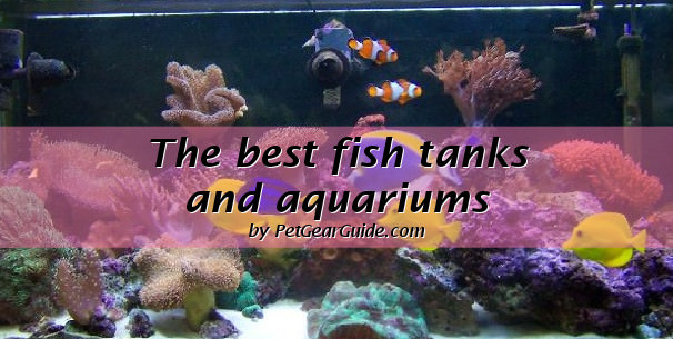 best fish tanks and aquariums