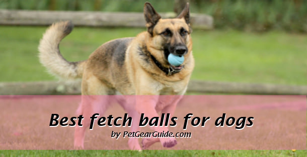 best fetch balls for dogs