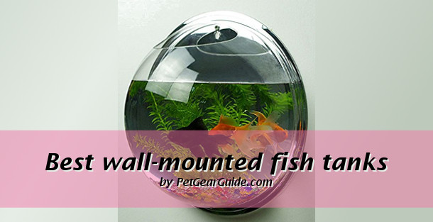 best wall mounted fish tanks