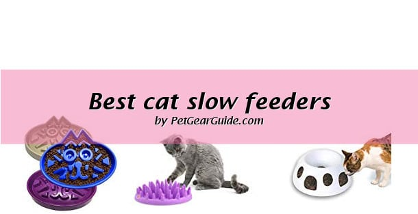 Best cat slow feeders