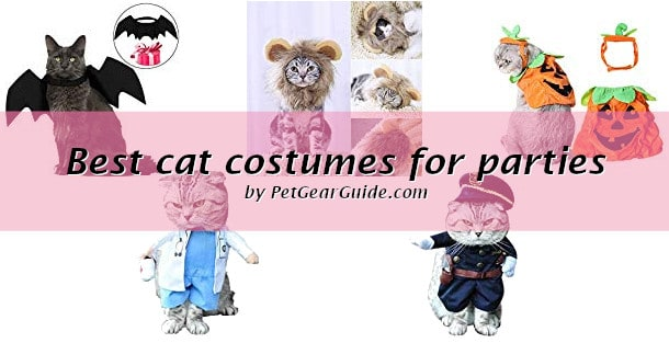 Best cat costumes for parties