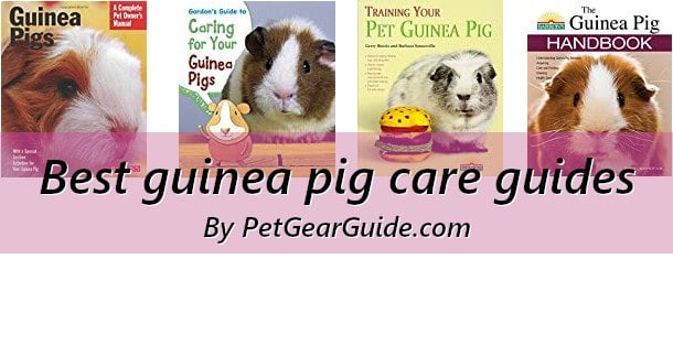 Best guinea pig care guides