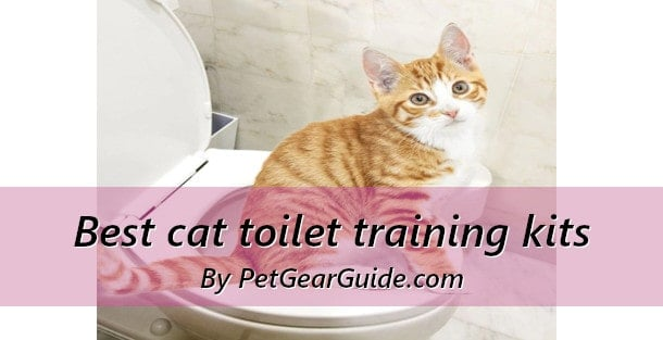 Best cat toilet training kits