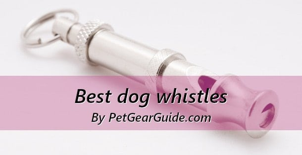 Best dog whistle