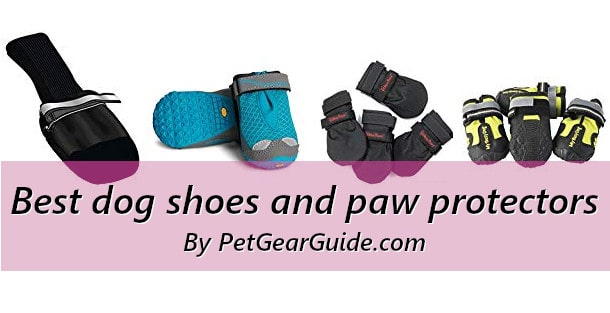 Best dog shoes and paw protectors