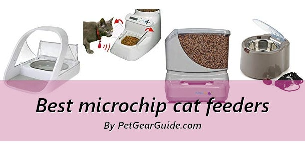 Best microchip cat feeders