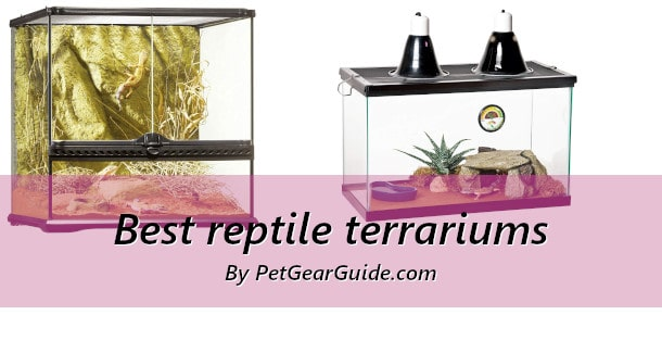 Best reptile terrariums