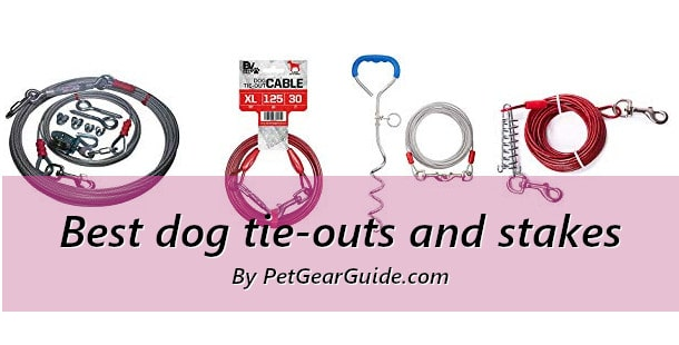 Best dog tie-outs and stakes