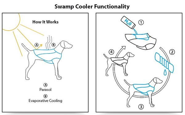How dog cooling vests work (Source: Ruffwear Swamp Cooler)