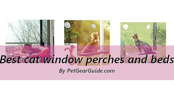 Best cat window perches and beds