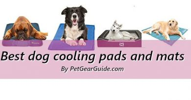 Best dog cooling pads and mats to keep your pet cool and happy