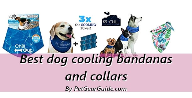 Best dog cooling bandanas and collars