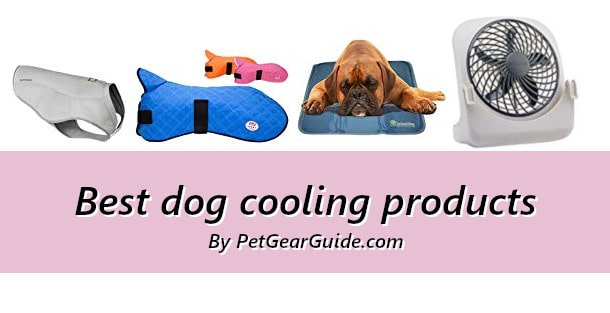 Best dog cooling products