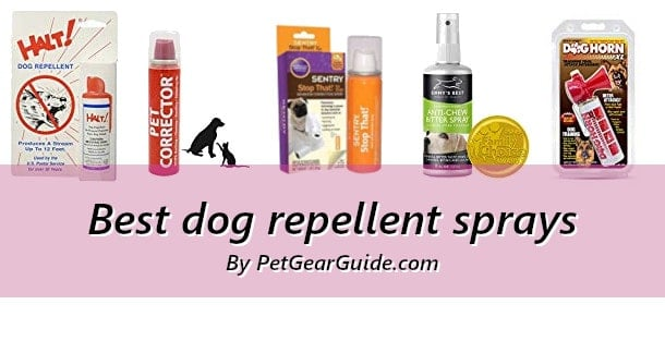 Best dog repellent sprays