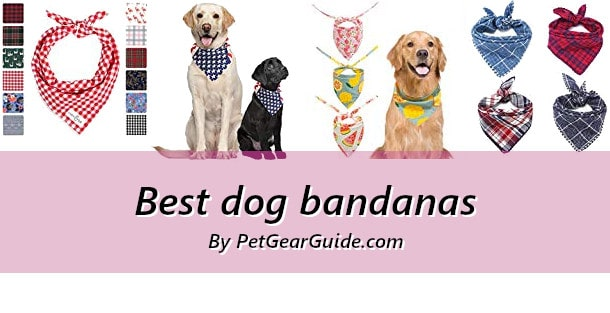 Best dog bandanas