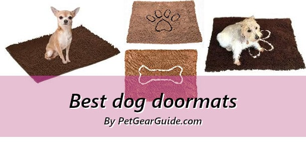 Best dog doormats