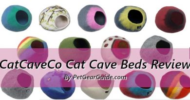 CatCaveCo Cat Cave Beds Review: Snoozing in style