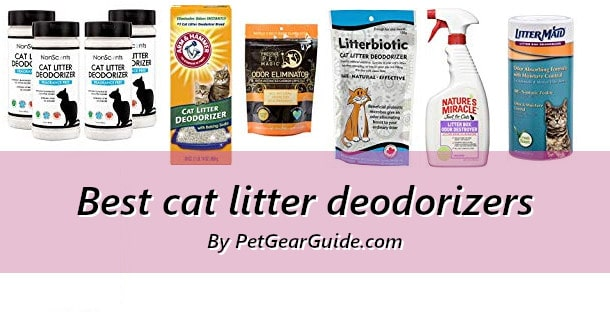Best cat litter deodorizers