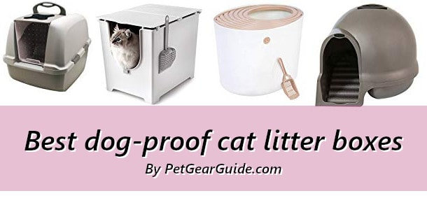 Best dog-proof cat litter boxes