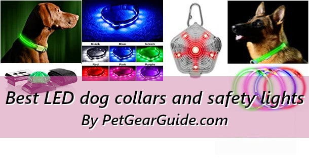 Best LED dog collars and safety lights