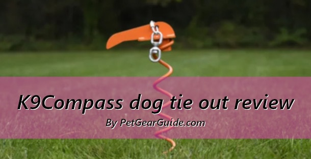 K9Compass dog tie out review