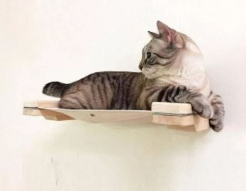 Cat Wall Shelves & Furniture