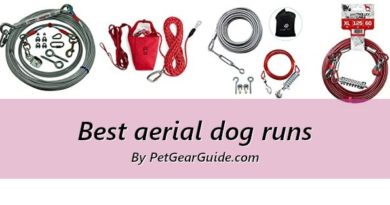 Best aerial dog runs and dog trolley systems to buy