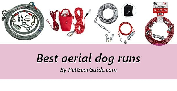 Best aerial dog runs