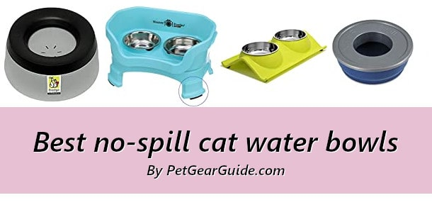 Best no-spill cat water bowls